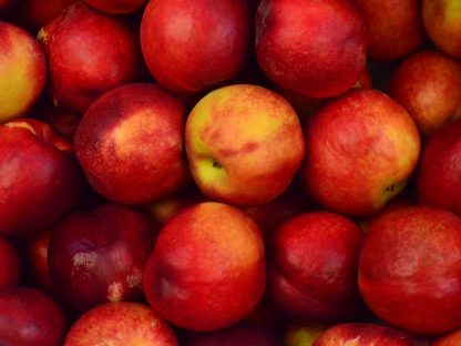 apples delicious red